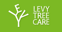 levy-tree-care